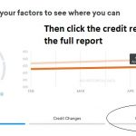 Click the Credit tab to see the full report