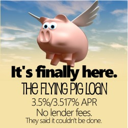 The Flying Pig Loan