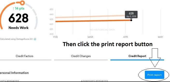 Click the Print button to print the report